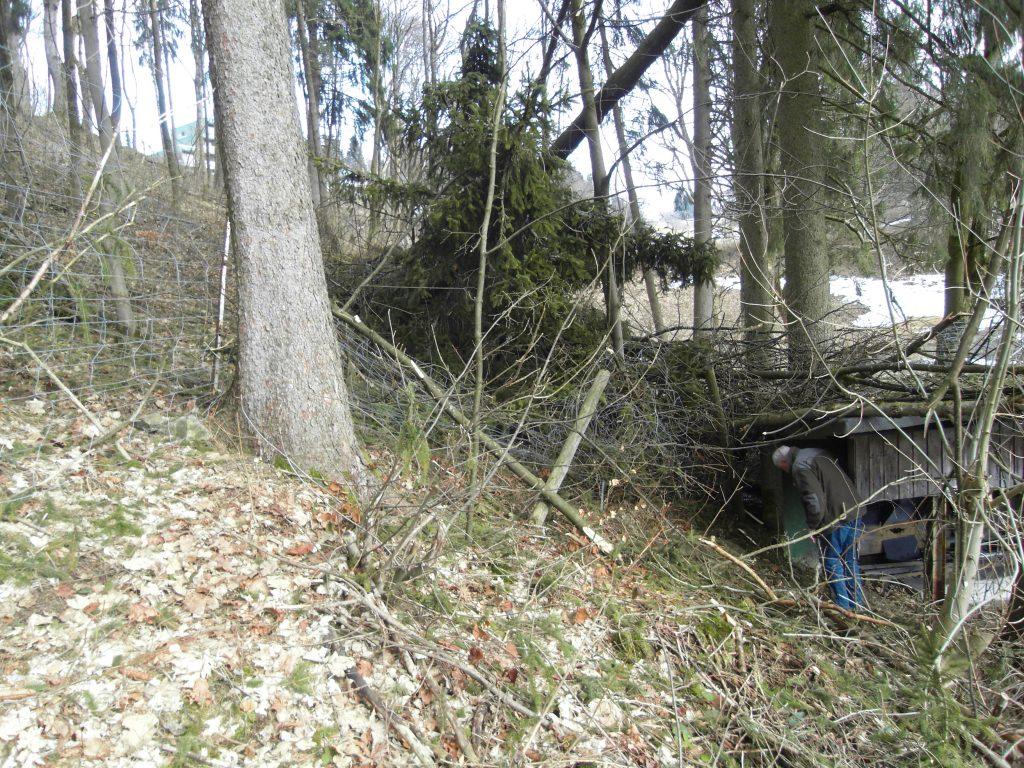 Das Dach des Kugelfangs ist mit abgerissenen Ästen bedeckt und wurde beschädigt