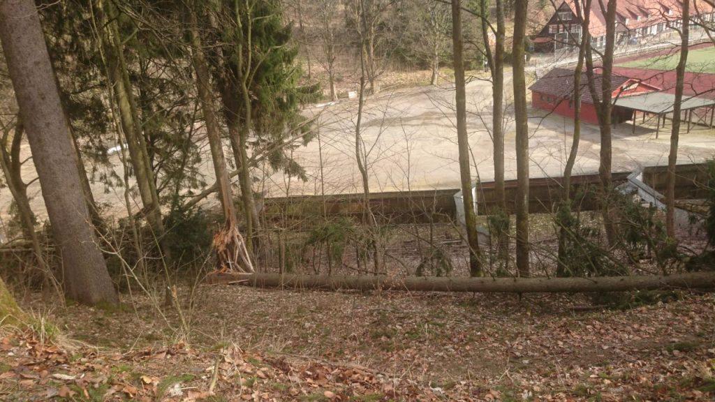 Der Schießkanal von oben, umgerissene Bäume im Vordergrund